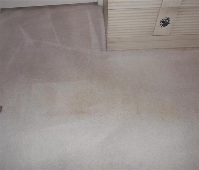 Carpet Cleaning After