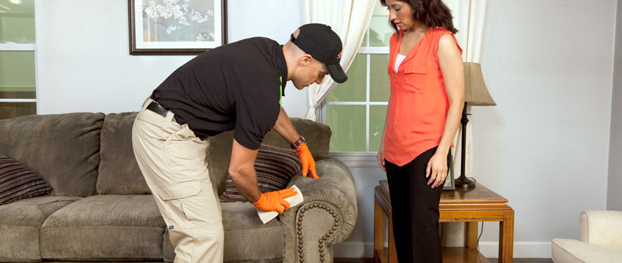 Reisterstown, MD carpet upholstery cleaning
